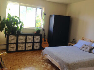 One Bedroom Apartment All inclusive Starting January 1st Kingston Kingston Area image 4