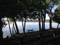 LAST MINUTE NEW WATERFRONT COTTAGE FOR RENT NEAR - AUG 29TH