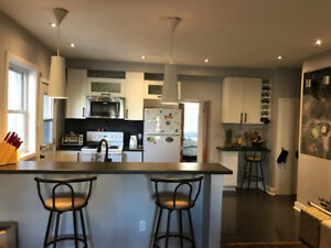 Beautiful two bedroom apt in Centretown