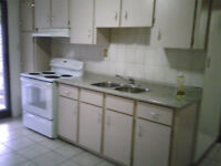 1 Bedroom Apt.utilities included. $1,100.00 availableJanuary 1st