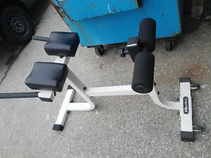 Nautilus HyperExtension Back / Ab Bench - Commercial Grade