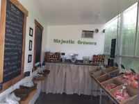 Fresh Local Produce for Sale