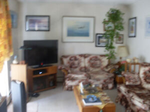 Shared furnished apartment one bedroom available