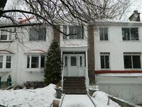 BEAUTIFUL RENOVATED LOWER DUPLEX WITH BASEMENT FOR RENT!