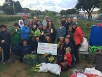 Affinity Credit Union Flash Volunteering at the Garden Patch