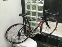 (SIZE 52cm) MARINONI VECTRA FULL CARBON ROAD BIKE - CAMPY CHORUS