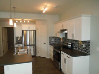 Lower Unit Suite in Vanier(still taking applicants as of May 29)
