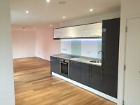 Carpentry/Joinery/Painting & Decorating/Flatpack