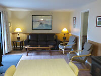 Beach Lakefront Chalet Rental with Hot Tub for 2