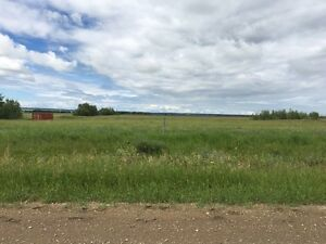 5 acres 1 mile form Beaverlodge on RR 101