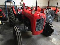 Massey Ferguson 35 - Fully restored vintage tractor