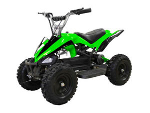 Sasquatch Jr - 500W Electric ATV