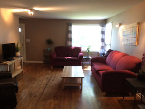 Room Available in Large Newly Renovated House