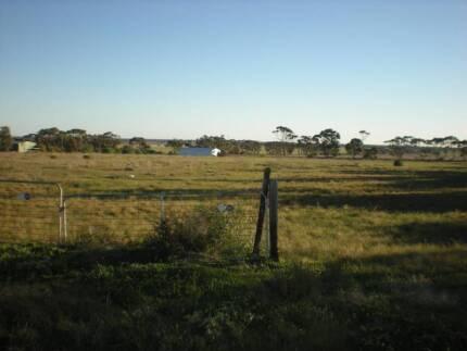 HOBBY FARM LAND 5 ACRES 35MIN x SALISBURY .8 TITLES.swap FORD GT Owen Wakefield Area Preview