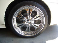 """20"""" Donz Luciano 20x8.5"""