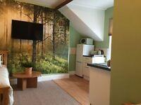 1 bedroom flat in Condercum Road, Newcastle Upon Tyne, NE4
