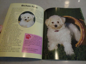 3 Books -Crazy For Puppies , Horse & Pony Book, When Santa Fell Kitchener / Waterloo Kitchener Area image 8
