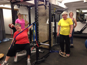 In Home Personal Training and Total Body Fitness Classes. Cambridge Kitchener Area image 2