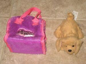 Pucci Puppy - $5.00 obo Kitchener / Waterloo Kitchener Area image 1