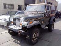 1995 Jeep TJ Autre