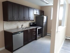 All Inclusive - Newly Renovated 1 Bedroom Apt For Rent!
