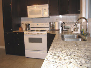 Beautiful House for Young Professional or Mature Student Kitchener / Waterloo Kitchener Area image 2