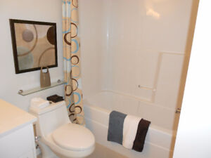 Beautiful, Fully Furnished 2-Bedroom Condo