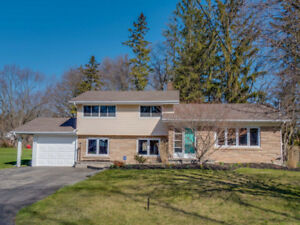 Open House : Sunday June 29, 2-4 pm