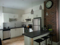 Luxurious Completely Renovated 4 1/2 in St. Henri