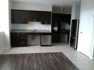 2 and 1 bedroom December East City