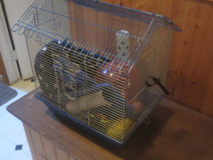 hamster cage and all the stuff needed