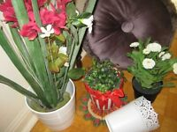 ArtificialFlowers, Plants,Decoration Pillow.Nice condition.