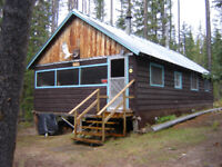Rustic Cabin for Sale