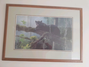 Beautiful panther framed picture