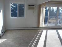 Large 2 Bdrm Condo-In-Suite Washer $850.00 Available Immediately