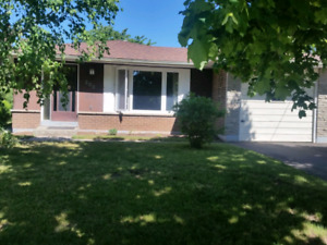 Open Concept, available July 1st