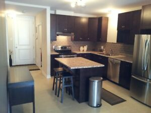 Modern 1 bed 1 bath condo for rent in Embrun