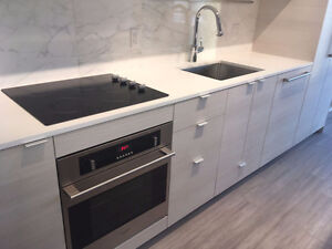 Brand New 1BR Highrise Suite