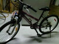 Mountain bike like new