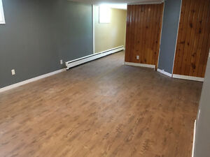Brand new renovated private basement unit - all inclusive