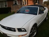 2006 Ford Mustang convertable Convertible