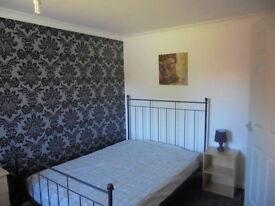double room for SINGLE person available now