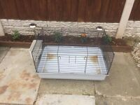 Indoor guniea pig or rabbit cage
