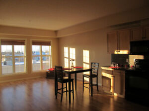 Beautiful St.Albert condo Available July 15- 1 bdrm and den