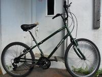 vélo  a 80$