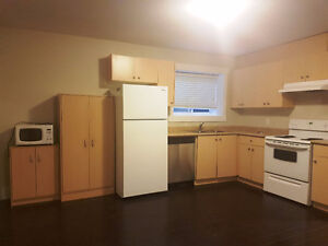 Nice Basement Suite Available on August 31 2017 (Panorama Ridge)