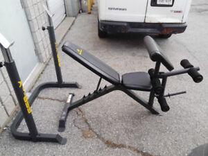 Apex Squat Rack, Bench Leg, Preacher Curl + Weights + Bar
