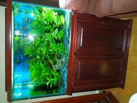 70 gallon Oceanic established aquarium fish tank