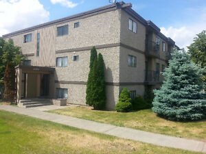 2 bedroom / 1 bathroom apartment available March 1