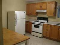 FOR RENT LARGE SPACIOUSCLEAN ONE BEDROOM APT. IN CORNER BROOK